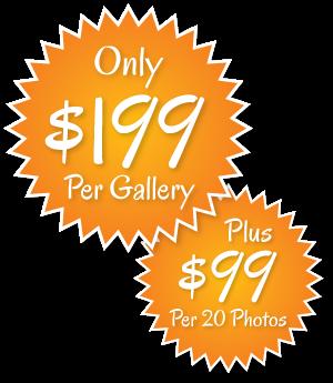 price-199ea_99per20